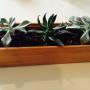 Small Bamboo Planter 3x9